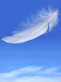 A white feather falling in a blue sky